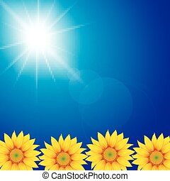 soleggiato, cielo, girasole, fondo