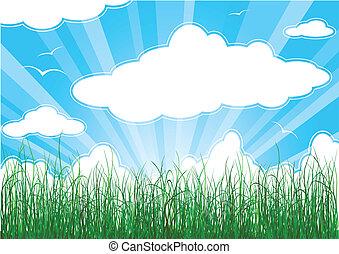 soleggiato, estate, fondo, con, erba, nubi, e, raggi sole