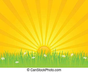 soleggiato, giorno estate