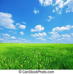 soleggiato, primavera, paesaggio