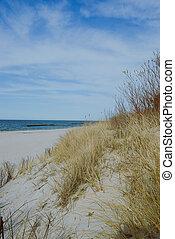 soleggiato, spiaggia, con, dune
