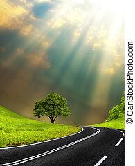 soleggiato, strada