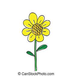soleil, fleur blanche, dessiné, main