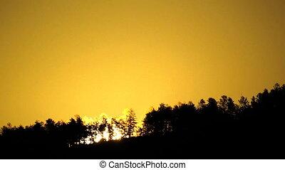 soleil, levée, forêt, montagne