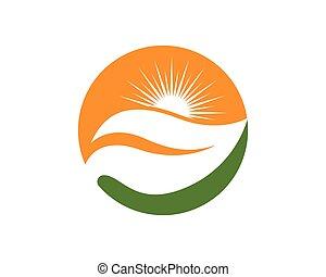 soleil, logo, vecteur, icône