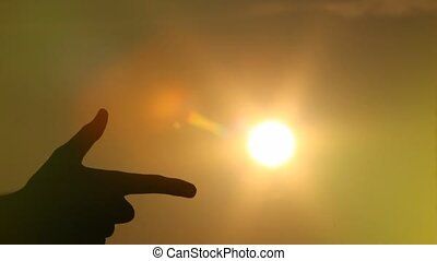 soleil, pousses, main