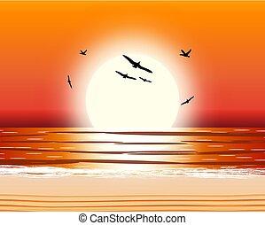 soleil, reflet, water.