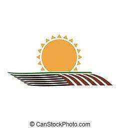 soleil, silhouette, ensemencer, coloré, horizont