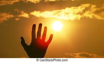 soleil, silhouettes, une, contre, main
