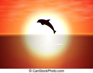 soleil, sur, dauphin, eau, sauter, coucher soleil