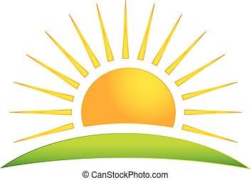 soleil, vecteur, colline verte, logo, icône