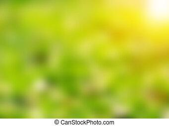 solfyldt, abstrakt, grønne, natur, baggrund, defocused