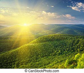 solig, morgon, in, mountain.