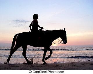 solitário, cavaleiro, em, pôr do sol