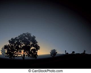 solitaire, arbre, mist., matin