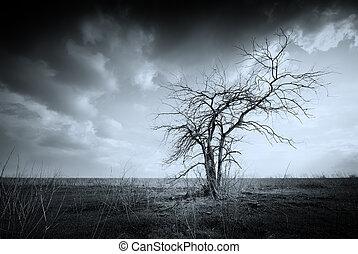 solitaire, arbre, mort
