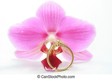 solitaire engagement ring in front of pink orchid
