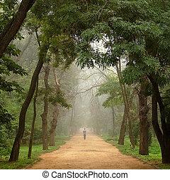 solitaire, homme, va, loin, sur, route, entre, arbres