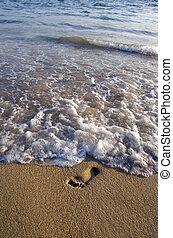 solitaire, pas, vague, mer sable, plage
