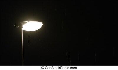 solitaire, pluvieux, réverbère, night.