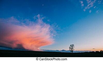 solitaire, sunrise., arbre, nature, paysage., croissant, chronocinématographie, levers de soleil, timelapse, printemps, pré, défaillance, champ, temps, campagne, ciel, au-dessus, sombre, matin