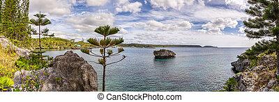 solitario, caledonia., yegua, nublado, árboles, island., ...