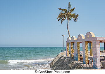 solitario, palmera, en, un, playa, con, un, piedra, estructura, en, el, primer plano