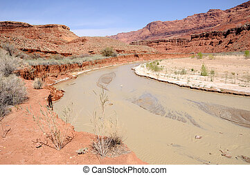solitario, ranch, valletta, canyon, fiume, fluente, paria,...