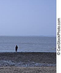 solitario, spiaggia, uomo