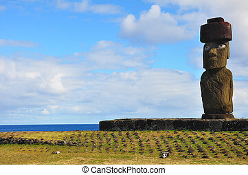 Solitary Moai on Easter Island - Solitary moai with coral...
