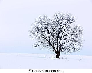 solitute, hiver