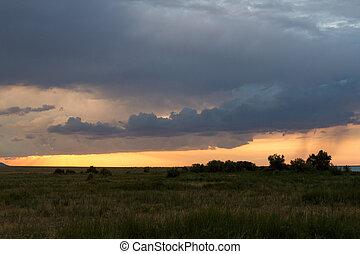 solnedgång, öken, regna