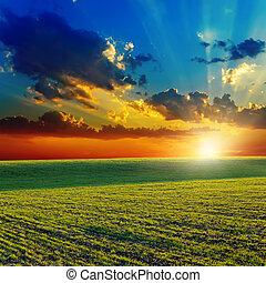 solnedgång, över, lantbruk, gröna gärde