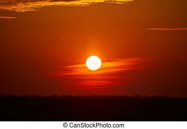 solnedgång, över, skog