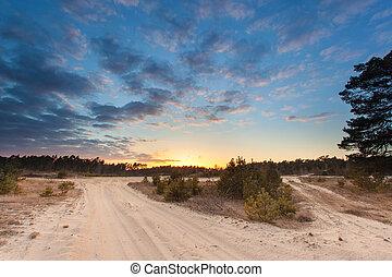 solnedgång, över, stroese, zand, driva, sand, naturen reserverar