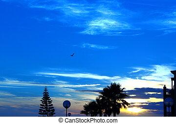 solnedgång, blå