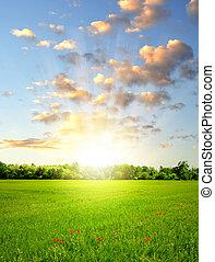 solnedgång, fjäder, ovanför, landskap