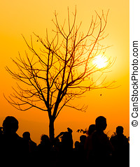 solnedgång, grupp, folk