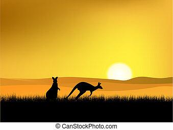 solnedgång, in, australien