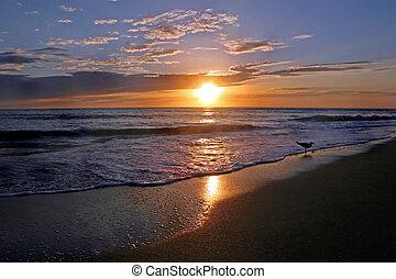 solnedgång, lysande