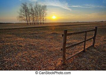 solnedgång, på, den, fält