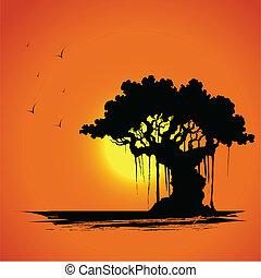solnedgång, träd, synhåll