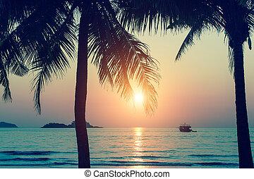 solnedgang, på, en, tropical ø