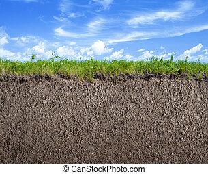 solo, chão, capim, e, céu, natureza, fundo