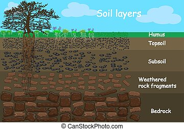 solo, diagrama, camada, soil., layers.