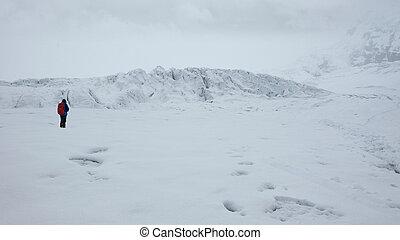 solo, glaciar, antisana, -, nublado, ecológico, volcán,...