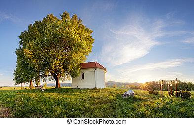 solo, granja, campos, primavera, día, capilla