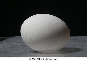 solo, huevo, intacto