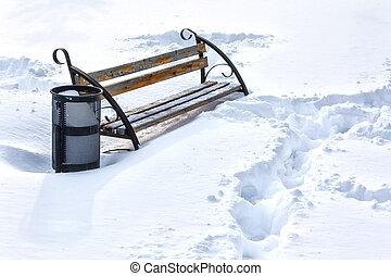solo, invierno, parque, nieve, banco, cubierto