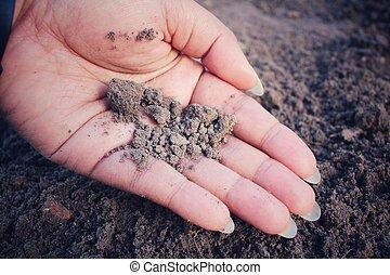 solo, mão